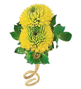 Chartreuse Chrysanthemum Boutonniere in Big Rapids, Cadillac, Reed City and Canadian Lakes MI, Patterson's Flowers, Inc.