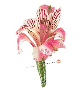 Pink Alstroemeria Boutonniere in send WA, Flowers To Go, Inc.