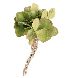 Green Hydrangea Boutonniere in Big Rapids, Cadillac, Reed City and Canadian Lakes MI, Patterson's Flowers, Inc.