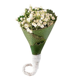 Rolled Gypsophila Boutonniere in Bartlesville OK, Eva's Flowers And Gifts