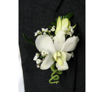 WHITE DENDROBIUM BOUTONNIEREPlease call for pricing in New Paltz NY, The Colonial Flower Shop