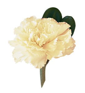 White Carnation Boutonniere in Paris TN, Paris Florist and Gifts