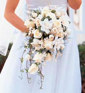 White Cascade Bridal Bouquet in Winnipeg MB, Cosmopolitan Florists