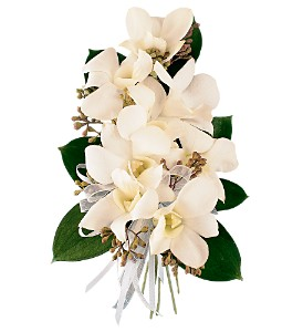 White Dendrobium Corsage in South Hadley MA, Carey's Flowers, Inc.