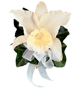 Japhet Orchid Corsage in Etobicoke ON, Alana's Flowers & Gifts