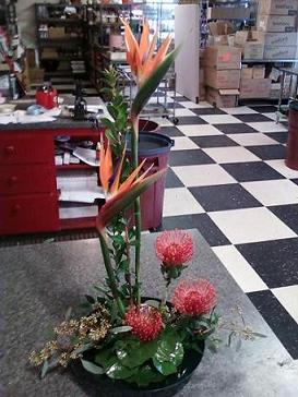 Tropical Bouquet in Wichita KS, J.R. Koontz Flowers