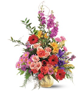Colorful Comfort in Dallas TX, Petals & Stems Florist