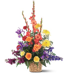 Rainbow Basket in Hudson, New Port Richey, Spring Hill FL, Tides 'Most Excellent' Flowers