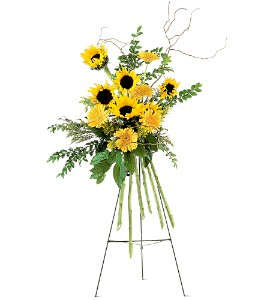 Shining Sentiments Spray in Bend OR, All Occasion Flowers & Gifts