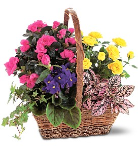 Blooming Garden Basket in South Plainfield NJ, Mohn's Flowers & Fancy Foods
