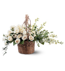 Basket of Light in Saratoga Springs NY, Dehn's Flowers & Greenhouses, Inc