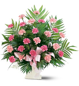 Classic Carnation Arrangement in Raleigh NC, Bedford Blooms & Gifts