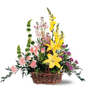 Springtime Basket in Indianapolis IN, Gillespie Florists