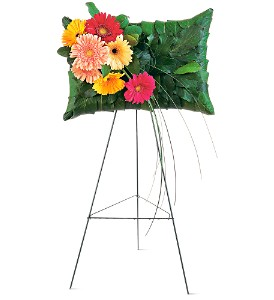 Uplifting Gerbera Pillow in Indianapolis IN, Gillespie Florists