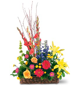 Sunshine Basket by Petals & Stems in Dallas TX, Petals & Stems Florist