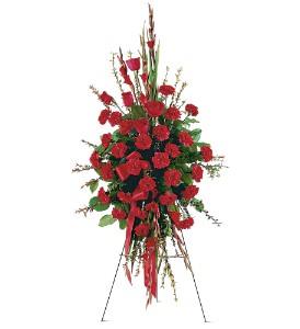 Red Regards Spray in Evansville IN, Cottage Florist & Gifts