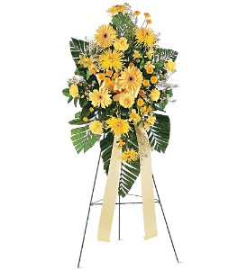 Brighter Blessings Spray in Huntington WV, Archer's Flowers, Inc.
