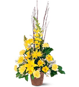 Brighter Blessings Arrangement in Evansville IN, Cottage Florist & Gifts