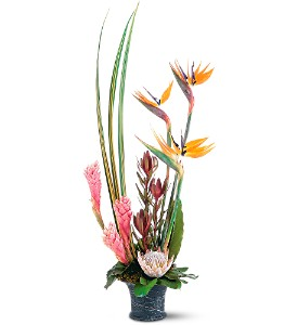 Tropical Paradise Arrangement in Largo FL, Rose Garden Flowers & Gifts, Inc