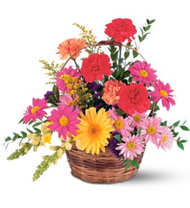 Vibrant Basket Arrangement in San Francisco CA, Fillmore Florist