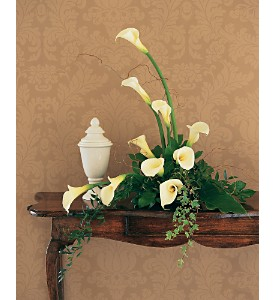 White Expressions in Bend OR, All Occasion Flowers & Gifts