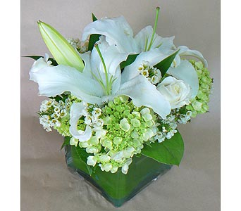Simply White in Birmingham MI, Tiffany Florist