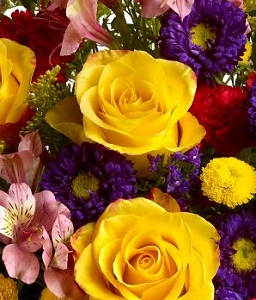 Designer''s Choice Arrangement, It''s all up to us in Burlington NJ, Stein Your Florist