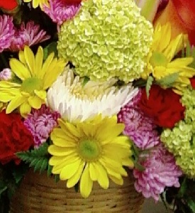 Designer's Choice Basket Arrangement in Burlington NJ, Stein Your Florist