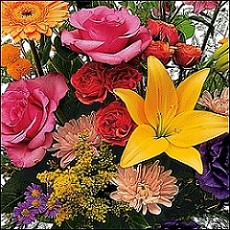 Designer's Choice Kid's Arrangement in Burlington NJ, Stein Your Florist