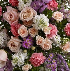 Designer's Choice Pastel Arrangement in Burlington NJ, Stein Your Florist