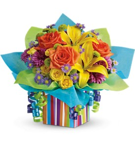 Teleflora's Rainbow Present in Philadelphia PA, Petal Pusher Florist & Decorators