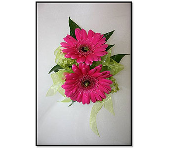Double Mini Gerbera Daisy Corsage in Hudson NH, Anne's Florals & Gifts