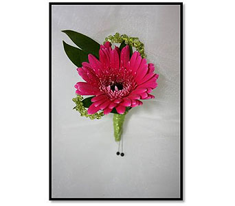 Double Mini Gerbera Daisy Boutonniere in Hudson NH, Anne's Florals & Gifts