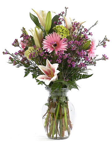 Lily Langtree in Scranton PA, McCarthy Flower Shop<br>of Scranton