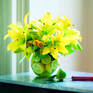 LILIES AND LEMONS in Longmont CO, Longmont Florist, Inc.