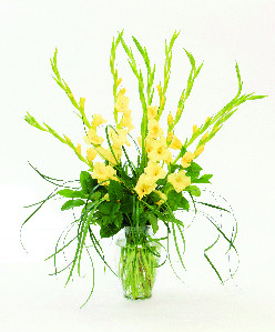 GLORIOUS GLADIOLI in Longmont CO, Longmont Florist, Inc.