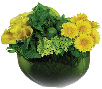 Lemon & Lime in New York NY, Fellan Florists Floral Galleria