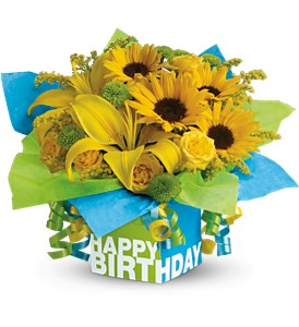 Teleflora's Sunny Birthday Present in Houston TX, Village Greenery & Flowers
