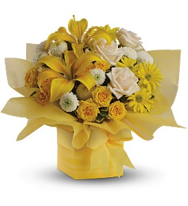 Teleflora's Sunshine Surprise in Isanti MN, Elaine's Flowers & Gifts