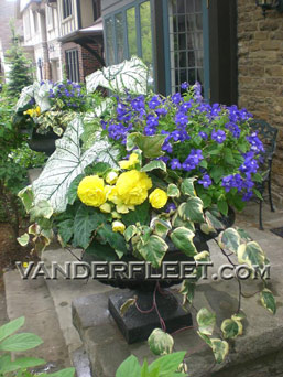 Classic Summer Outdoor Planter in Etobicoke ON, VANDERFLEET Flowers