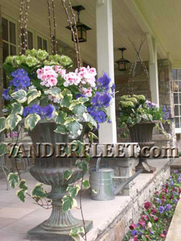 Spring Outdoor Planter - Hydrangea Ivy Design in Etobicoke ON, VANDERFLEET Flowers