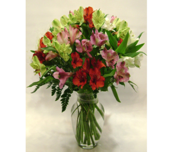 Absolutely Alstroemeria! in Herndon VA, Herndon Florist, Inc