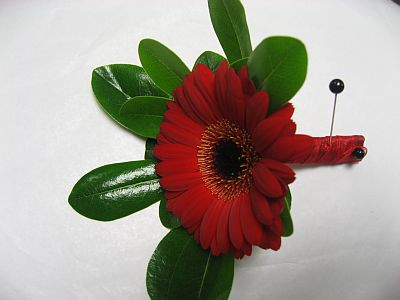 Red Gerbera Bout in Guelph ON, Patti's Flower Boutique