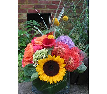 Sunny Day in Guilford CT, Guilford White House Florist
