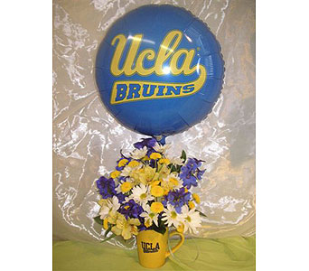 UCLA School Spirit Mug in West Los Angeles CA, Westwood Flower Garden
