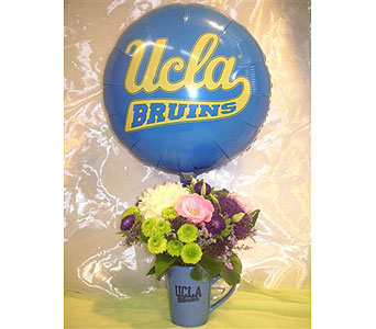 UCLA Bruin Blue Mug Arrangement in West Los Angeles CA, Westwood Flower Garden