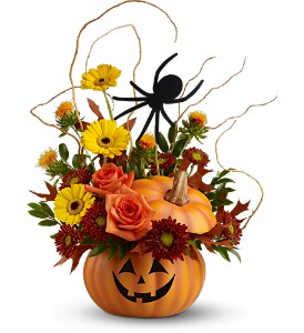 Teleflora's Spin a Web Bouquet in Burlington NJ, Stein Your Florist