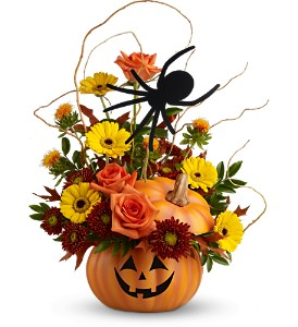 Teleflora's Spin a Web Bouquet - Deluxe in Burlington NJ, Stein Your Florist