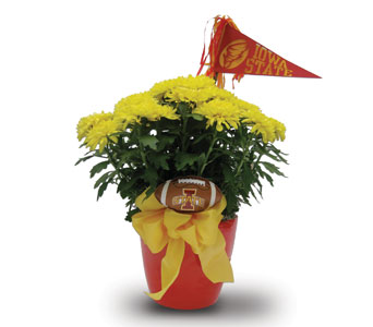 Cyclone Touchdown in Des Moines IA, Doherty's Flowers