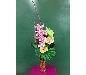 Cymbidium Cylinder in Deerfield IL, Swansons Blossom Shop